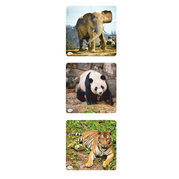 Puzzles progresivos Animales Miniland 36060